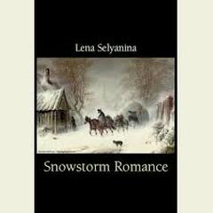 Snowstorm Romance