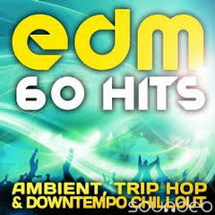 EDM Ambient, Trip Hop & Downtempo Chillout (No. 1) - Various Artists