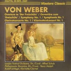 Concerto For clarinet And Orchestra No1 In F Minor Op 73