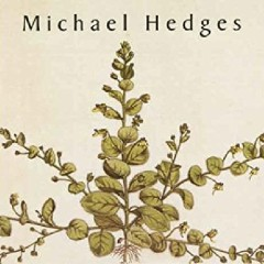 Taproot - Michael Hedges