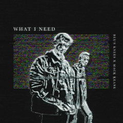 What I Need (Single)