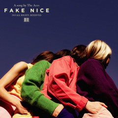 Fake Nice (Single) - The Aces