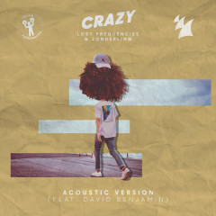 Crazy (Acoustic Version) - Lost Frequencies, Zonderling