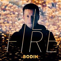 Wild Fire (Single)