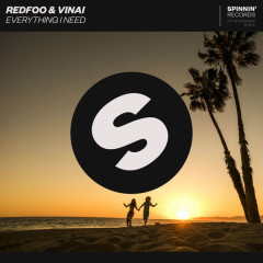 Everything I Need (Single) - Redfoo, VINAI