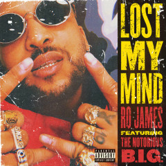 Lost My Mind (Single) - Ro James
