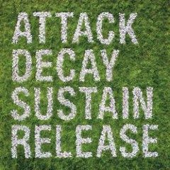 Attack Decay Sustain Release (Limited Edition) - Simian Mobile Disco