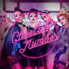 My Number - Cheetah