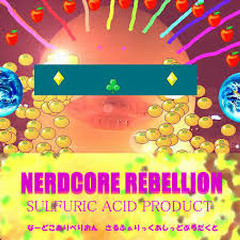 NERDCORE REBELLION