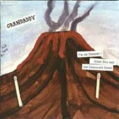 I'm On Standby (Single) - Grandaddy