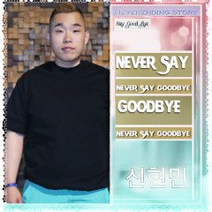 Never Say Goodbye (Single) - Shin Hyun Min