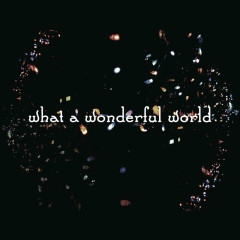 What A Wonderful World - Salyu, Takeshi Kobayashi