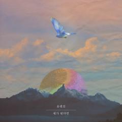 If I Were A Bird (Single) - Yoon&Jin