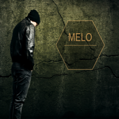 Fake Foolish - Melo