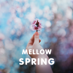 Mellow Spring - Various Artists