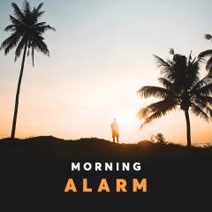 Morning Alarm - Various Artists