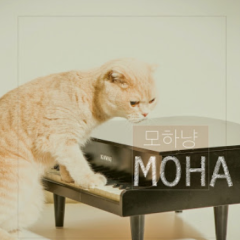 All Hanyang - Moha