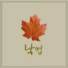 A Fallen Leaf