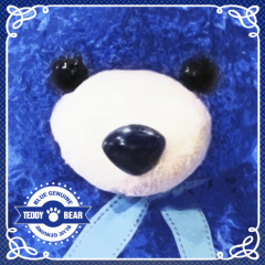 Teddy Bear - Bluegenuine