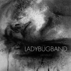 Debris - LADY BUG BAND