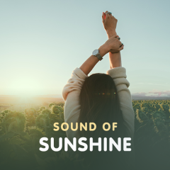 Sound Of Sunshine - Various Artists