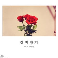 Rose Fragrance - Met