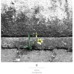 Flower (Single) - Jeongmilla