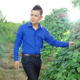 Màu Hoa Bí