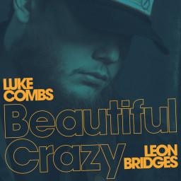 Beautiful Crazy (Live)