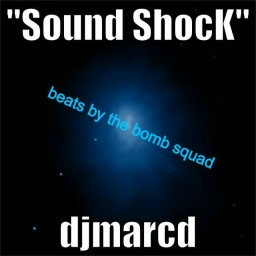 Sound Shock (feat. Public Enemy  & Bomb Squad)
