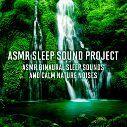 ASMR Sleep Binaural Synthesizer and Birds Sounds 1