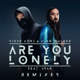 Are You Lonely (Steve Aoki Remix)