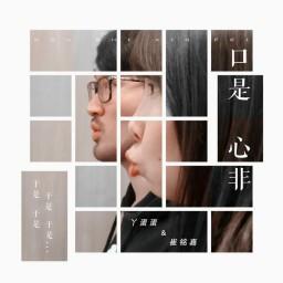 Khẩu Thị Tâm Phi / 口是心非 (Cover)