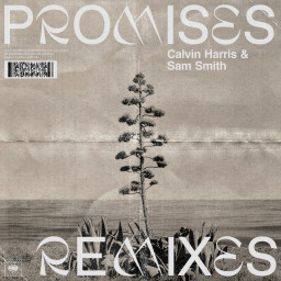 Promises (Illyus & Barrientos Remix)