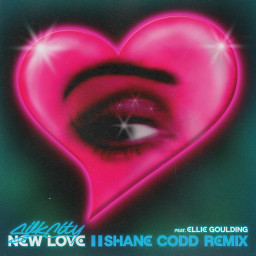 New Love (Shane Codd Remix)
