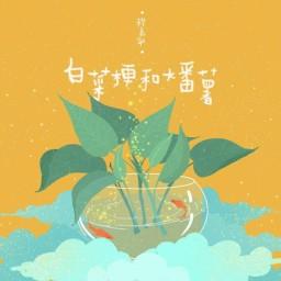 白菜梗与大番薯 / Cải Thảo Và Khoai Lang Lớn