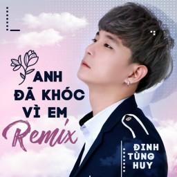 Anh Đã Khóc Vì Em (Remix)
