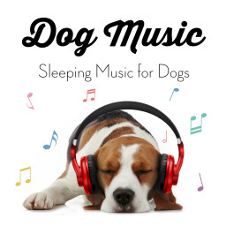 Dog Music Therapy
