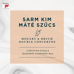 Double Concerto For Violin & Viola In E Minor, OP. 88 - I. Andante Con Moto