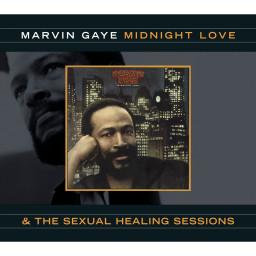 Sexual Healing (Alternate Vocal/Mix)
