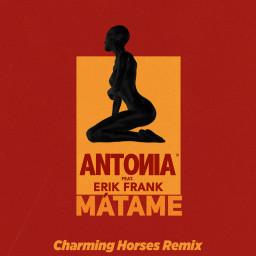 Mátame (Charming Horses Remix)