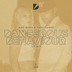 Dangerous Behaviour (VIP Mix)