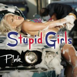 Stupid Girls (Noisetrip Remix)