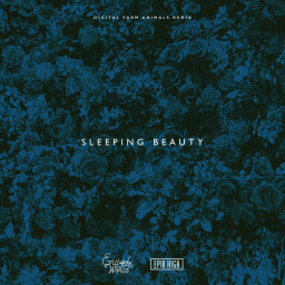 Sleeping Beauty (Digital Farm Animals Remix)