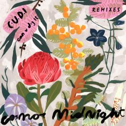 C.U.D.I (Can U Dig It) [Friendly Fires Remix]