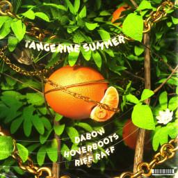 Tangerine Summer