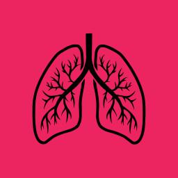 Hengittää