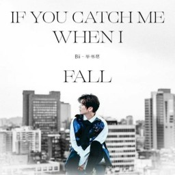 If You Catch Me When I Fall
