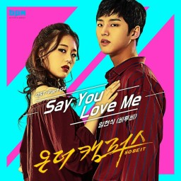 Say You Love Me (inst.)
