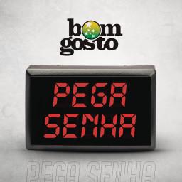 Pega Senha